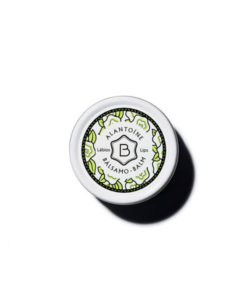 Benamor 1925 - Alantoine - Labios Balsamo - 12ml
